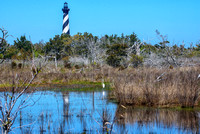 Lighthouse & Egret